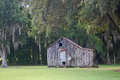Dilapidated old louisiana shack among oak trees hung with spanish moss Royalty Free Stock Images
