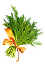 Dill bunch with yellow ribbon Stock Photo