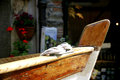 Dinghy in italy wooden details Stock Photography