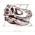 Dinosaur Skull Sketch Of TRex Skull