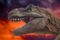 Dinosaur trex close up on inferno background Royalty Free Stock Photo