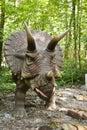 Dinosaur - Triceratops Royalty Free Stock Photo