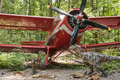 Dinosaurs and biplane Royalty Free Stock Photo