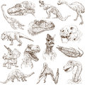 Dinosaurs no collection of an hand drawn illustrations description full sized hand drawn illustrations drawing on white background Royalty Free Stock Image