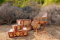 Directors Chair In Safari Royalty Free Stock Photo