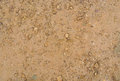 Dirt close up background texture Royalty Free Stock Photography
