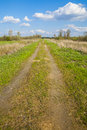Dirt gravel road through the meadow. Royalty Free Stock Photo