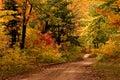 Dirt Road in Autumn-Michigan's Upper Peninsula Royalty Free Stock Photo