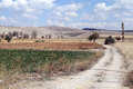 Dirt road field anatolia turkey Stock Photo