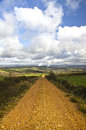 Dirt road green field landscape with blue sky and a track Stock Photography
