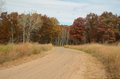 Dirt road leading through woods in the fall Stock Photography