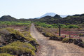 Dirt road in Spain, Canarian islands. Dividing line. Bicycle track Royalty Free Stock Photo