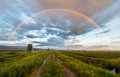 Dirt road under a beautiful rainbow above Stock Photography