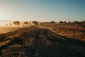 Dirt track in crossing a beautiful sunrise landscape. Royalty Free Stock Photo