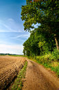 Dirt track road next to forest and plowed field. Calm and silence of countryside. Royalty Free Stock Photo