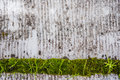 Dirty Background with green detail
