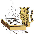 Dirty cat litter box an image of a and Royalty Free Stock Images