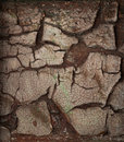 Dirty old cracked wall Royalty Free Stock Photography