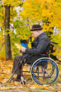 Disabled grandfather and grandchild outdoors using wheelchair holding fallen golden leaf in the forest in an autumn setting Royalty Free Stock Photo