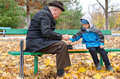 Disabled senior man teaching his grandson to play chess elderly grandfather sitting on a wooden park bench outdoors in autumn cute Royalty Free Stock Images