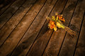 Discarded dried flower bouquet an old and fading of flowers lies on a wooden floor Stock Image