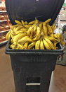 Discarded old bananas in trash bin at grocery stor store Stock Photography