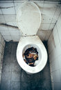 Disgusting toilet an old nasty clogged with holding remains Stock Photos