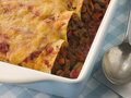 Dish of Beef Enchiladas Stock Photos