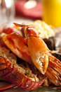 Dish with cooked crabs and lobsters Stock Image