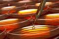 Dishes lab petri research science Royaltyfria Foton
