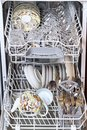 Dishwasher with clean dishes Royalty Free Stock Photo