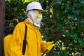 Disinfection man in a protective suit spraying plants against pests photography Stock Photo