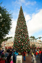 Disneyland's Christmas Tree Stock Photo