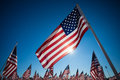A dispaly of american flags with a sky background display many blue Royalty Free Stock Photos