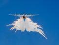 Dispensing flares a large transport aircraft during a climb Stock Image
