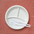 Disposable plastic plate checkered cloth Royalty Free Stock Photo