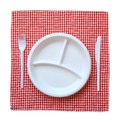 Disposable plastic plate on a checkered cloth Royalty Free Stock Photos