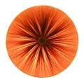 Dispositivo elétrico claro vermelho Fotos de Stock Royalty Free