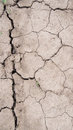 Disruption season drought parched earth the dead land Royalty Free Stock Photo