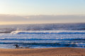 Ocean Waves Beach Surfer Walking Royalty Free Stock Photo