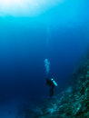Diver in the deep single at a coral reef at bunaken island indonesia Stock Image