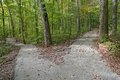 Diverging paths a paved trail in a hardwood forest diverges into two Royalty Free Stock Photo