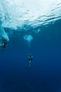 Divers descend into blue hole in caribbean sea bel belize november at lighthouse reef off coast of belize central america Stock Images