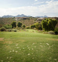 Divets on tee area of popular Arizona Course Royalty Free Stock Photo