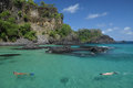 Diving in a crystalline sea beach in Fernando de Noronha Royalty Free Stock Photo