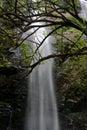 Djup skogvattenfall p� nationalparken thailand Fotografering för Bildbyråer