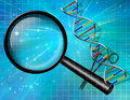 DNA Royalty Free Stock Photo