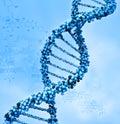 DNA Foto de archivo libre de regalías