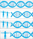 Dna banners illustration of several Stock Images