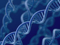 Dna on blue background d render of Stock Images